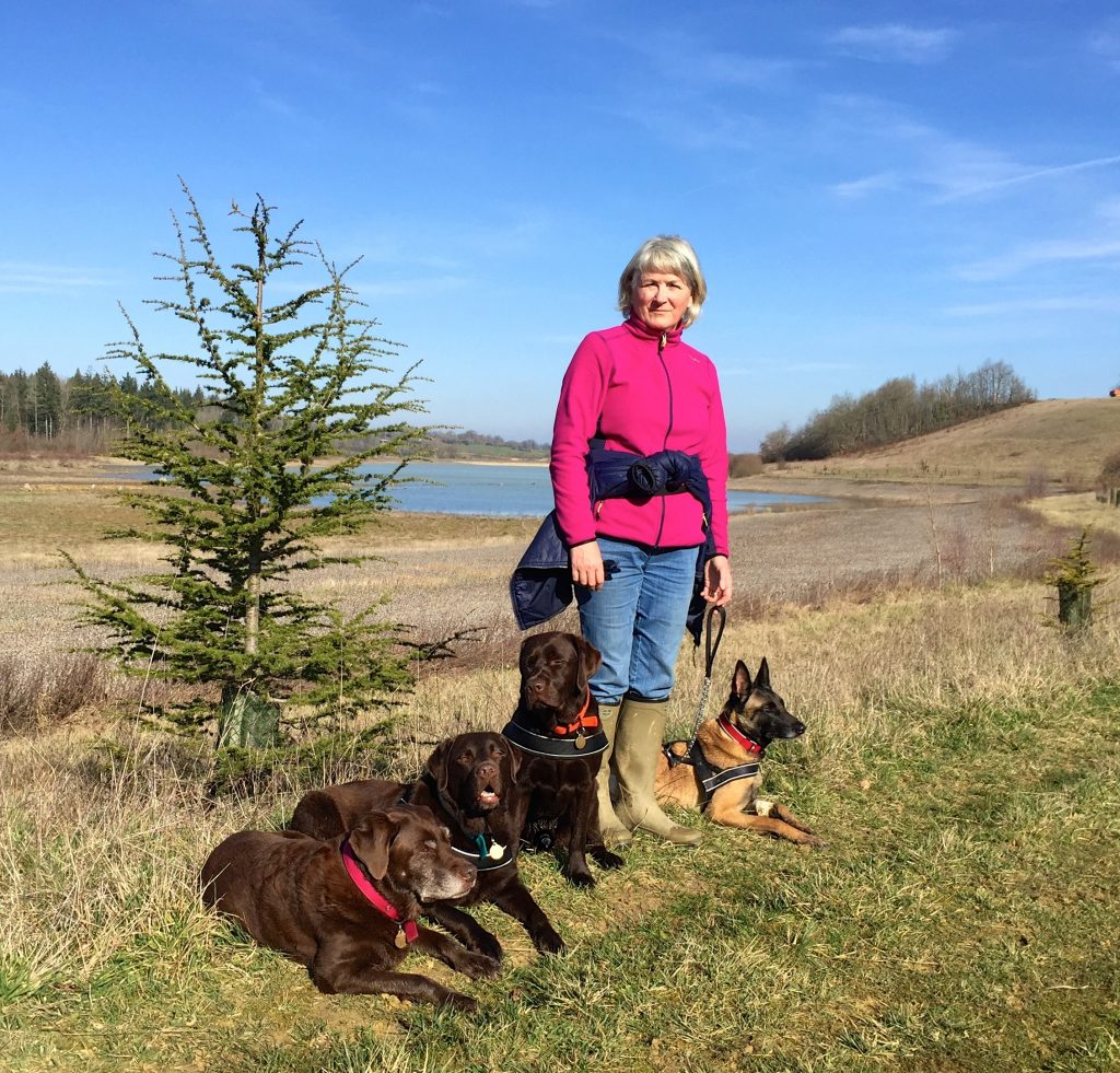 Julie Hart with four dogs