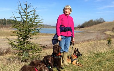 Coronavirus: one Petersfield animal behaviourist has lockdown advice for you and your dog