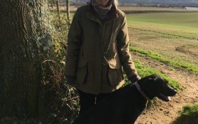 Wilde Walk in the Mud at Durleighmarsh